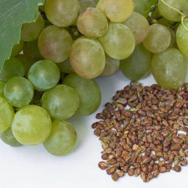 عصاره هسته انگور